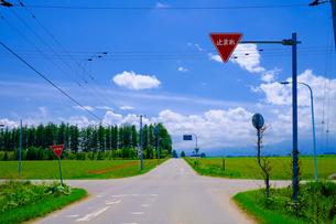 青空と道路の写真素材 [FYI04579674]