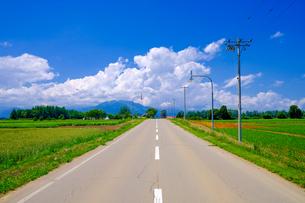 青空と直線道路の写真素材 [FYI04579675]