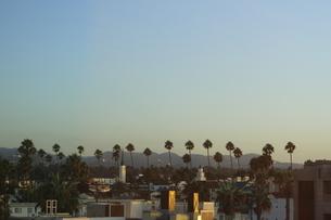 ロサンゼルスの街並みの写真素材 [FYI04579784]