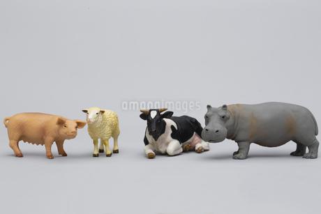 草食動物のフィギュアの写真素材 [FYI04580106]