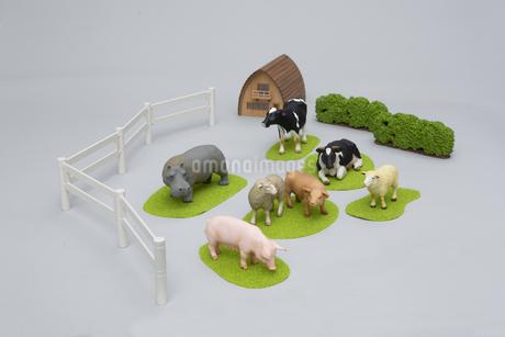 牧場にいるような草食動物のフィギュアの写真素材 [FYI04580107]