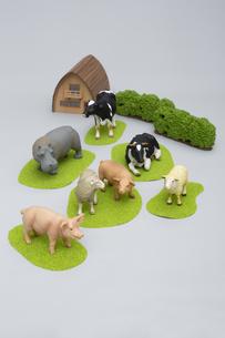 牧場にいるような草食動物のフィギュアの写真素材 [FYI04580109]