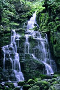 蓼泉の滝の写真素材 [FYI04580180]