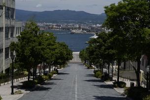 八幡坂の写真素材 [FYI04580271]