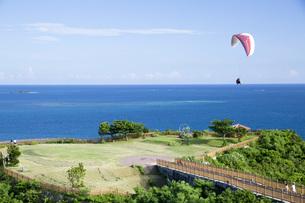 知念岬公園とパラグライダーの写真素材 [FYI04580682]
