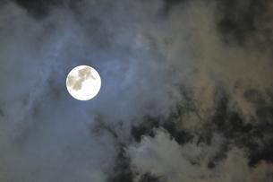 おぼろ月夜の写真素材 [FYI04580795]