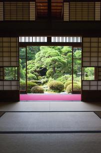 和室と日本庭園の写真素材 [FYI04580987]