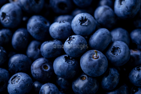 Fresh ripe blueberries background.Close up view.の写真素材 [FYI04581608]