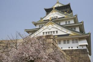 春の大阪城の写真素材 [FYI04581663]