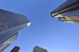 新宿副都心の高層ビル群の写真素材 [FYI04581879]