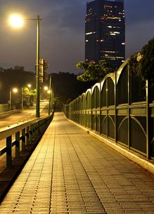 黄金色に輝く深夜の歩道の写真素材 [FYI04581882]