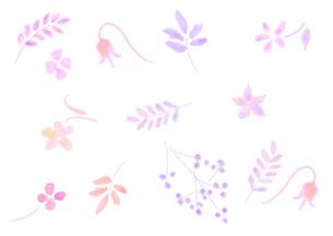 花のパターンのイラスト素材 [FYI04581992]