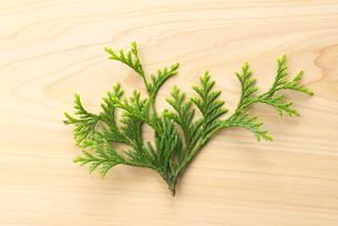 檜の板に置かれた檜葉の写真素材 [FYI04582223]