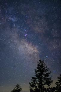 天の川銀河とカラマツのシルエットの写真素材 [FYI04582597]