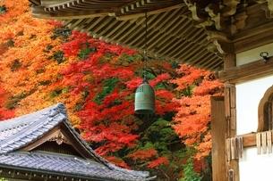 秋の室生寺 護摩堂釣鐘の写真素材 [FYI04582616]