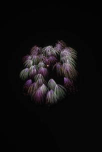 いばらきまつり フィナーレ花火の写真素材 [FYI04583821]