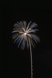 いばらきまつり フィナーレ花火の写真素材 [FYI04583824]