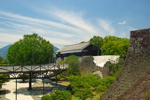 復旧工事中の熊本城の写真素材 [FYI04583990]