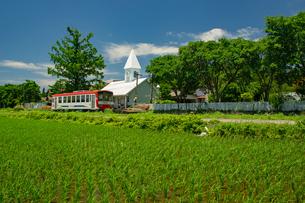 新緑の南阿蘇村の写真素材 [FYI04584016]