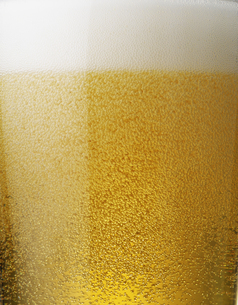 ビールの泡のクローズアップの写真素材 [FYI04584354]