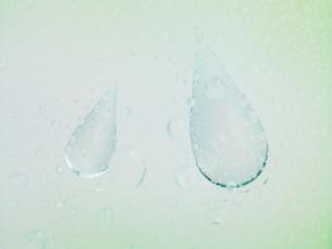 雨の滴のクローズアップの写真素材 [FYI04584363]