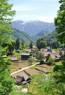 世界遺産 五箇山の農村風景の写真素材 [FYI04584730]