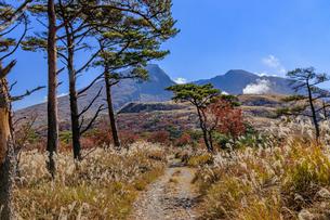 秋のえびの高原 韓国岳と登山道 宮崎県えびの市の写真素材 [FYI04584998]