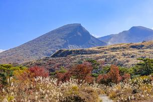秋のえびの高原 韓国岳と登山道 宮崎県えびの市の写真素材 [FYI04584999]