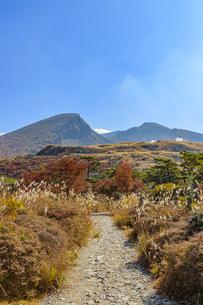 秋のえびの高原 韓国岳と登山道 宮崎県えびの市の写真素材 [FYI04585008]