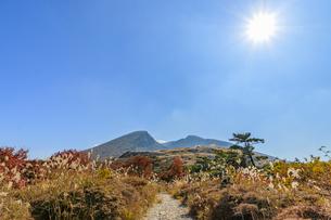 秋のえびの高原 韓国岳と登山道 宮崎県えびの市の写真素材 [FYI04585009]