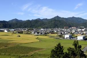 兵庫,市川サービスエリアから田園と町並みの写真素材 [FYI04585132]