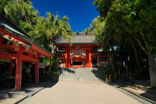 宮崎県 青島神社の写真素材 [FYI04585137]