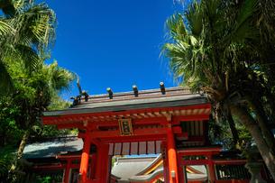 宮崎県 青島神社の写真素材 [FYI04585139]