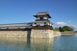 広島県 広島城の写真素材 [FYI04585174]
