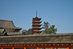 広島県 宮島 厳島神社の写真素材 [FYI04585179]