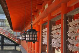 広島県 宮島 厳島神社の写真素材 [FYI04585181]