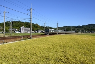 三田,青空のJR福知山線,快速電車の写真素材 [FYI04585281]