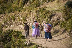 チチカカ湖・太陽の島の先住民アイマラ族の後ろ姿と民族衣装の写真素材 [FYI04585399]