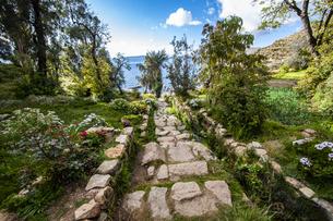 チチカカ湖・太陽の島のインカ階段の写真素材 [FYI04585401]