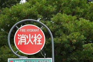 消火栓の標識の写真素材 [FYI04585471]