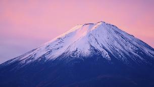 山梨県 河口湖より朝焼けの富士山の写真素材 [FYI04585707]