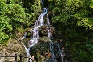 ごつごつした岩を流れる滝の写真素材 [FYI04585847]