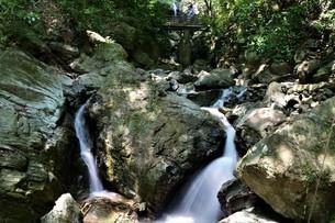 岩がたくさん転がる渓流の写真素材 [FYI04585848]