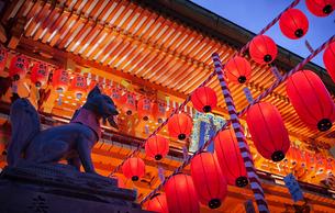 伏見稲荷大社の本宮祭の夜景の写真素材 [FYI04586129]