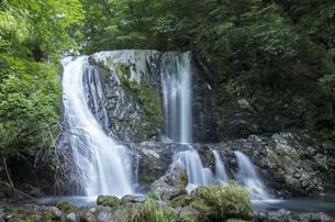 御嶽山のこもれびの滝の写真素材 [FYI04586322]