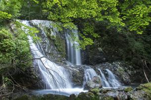 御嶽山のこもれびの滝の写真素材 [FYI04586326]