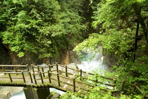 竜神の滝の写真素材 [FYI04586390]