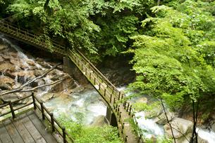 竜神の滝の写真素材 [FYI04586391]