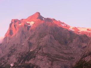 スイス、グリンデルワルト、ヴェッターホルンの夕焼けの写真素材 [FYI04586759]