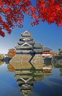 11月 国宝松本城の写真素材 [FYI04586914]